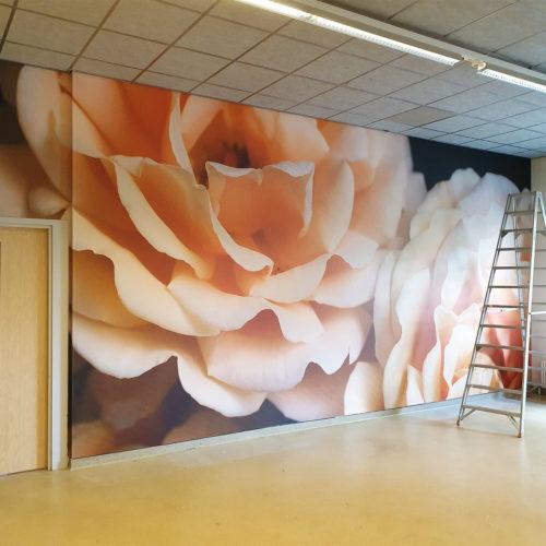 Aeres, behang bloemlokaal